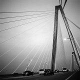 ravenel bridge in charleston- eine Schraegseilbruecke über den Cooper River in South Carolina, verbindet Downtown Charleston auf Mount Pleasant
